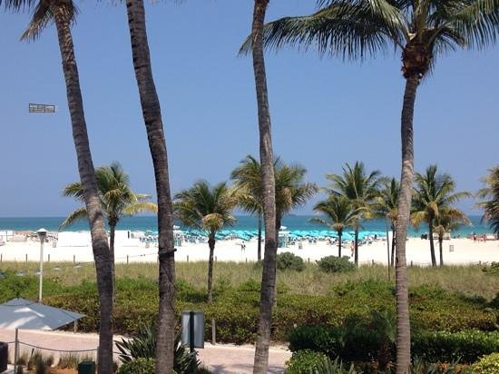 The Ritz-Carlton, South Beach : View of beach from pool