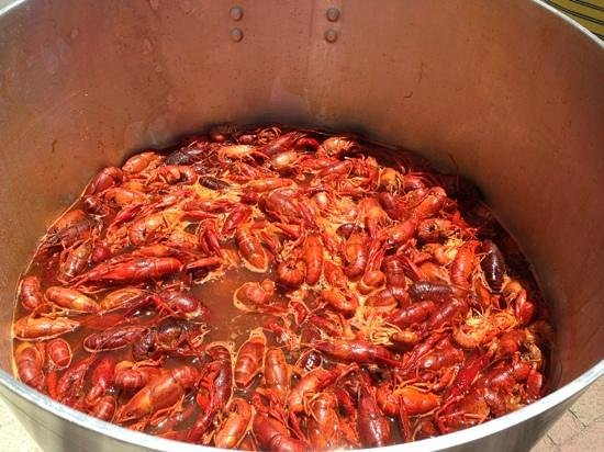 The Historic Downtowner: crawfish boil