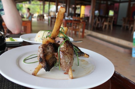 Tortuga Lodge & Gardens: Excellent food