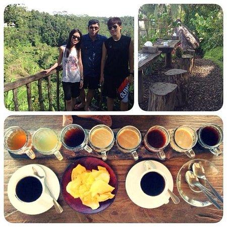 Bali Pulina Agro Tourism: Luwak Coffee