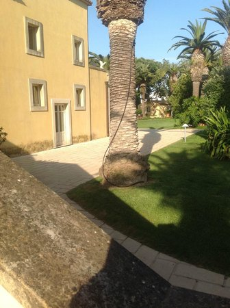 Hotel Caiammari: nicest part of the grounds
