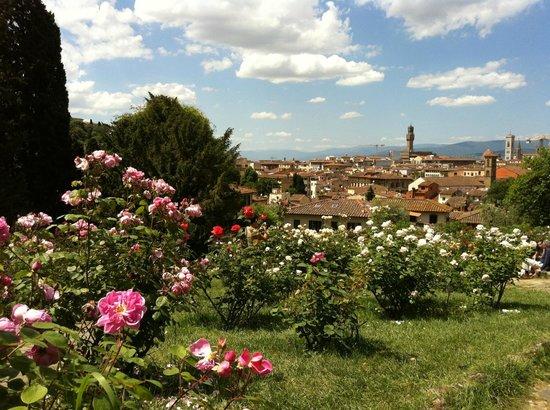 Panorama dal giardino delle rose foto di folon e il giardino delle rose firenze tripadvisor - Il giardino delle rose ...