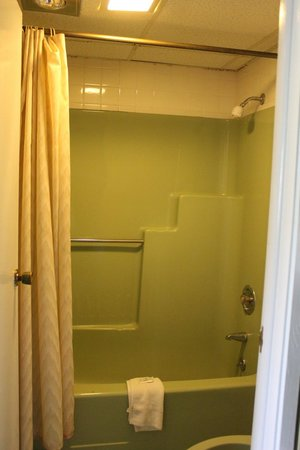 The Mountaineer Inn: lime green moldy bathroom