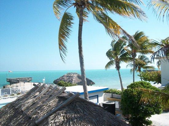 Key Colony Beach Motel : Key Colony Beach
