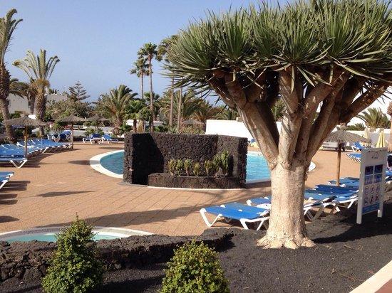 Hotel Floresta: Beautiful views and gardens