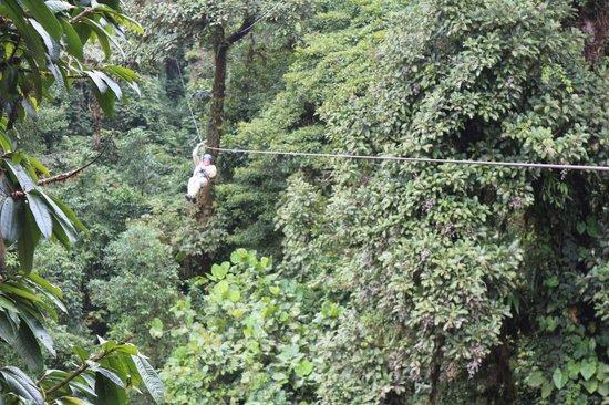Parque Selvatura: exemple de tyrolienne