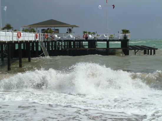 Delphin Imperial Hotel Lara: Beach bar