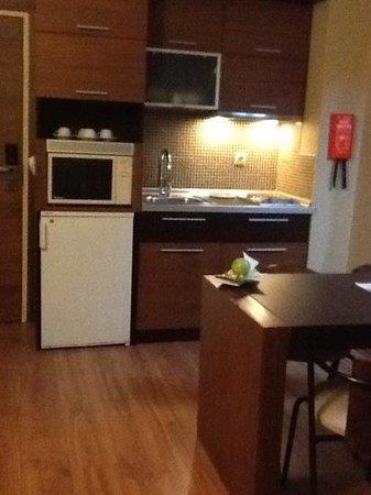 Cettia Apart Hotel: Room 310 Small kitchen unit
