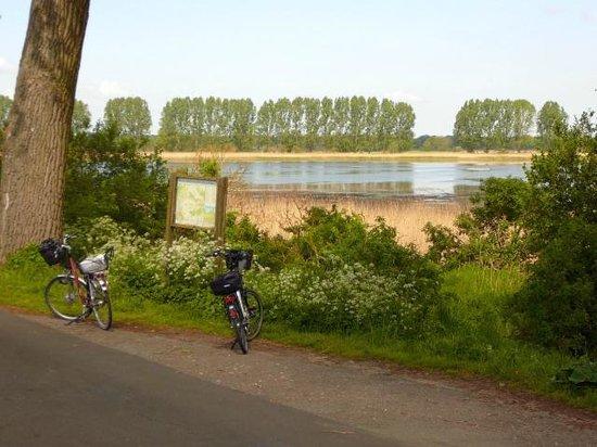 Landhotel Spornitz Van der Valk: Naturschutzgebiet Lewitz