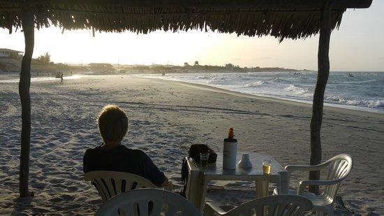 Hotel Vila Selvagem: The beach