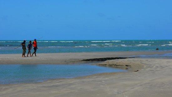 Hotel Vila Selvagem : The beach