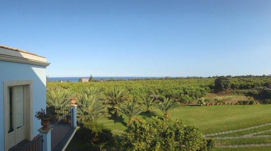 Torre Archirafi Resort : vista dalla stanza su agrumeto e mare