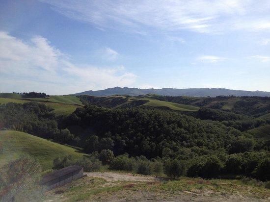 Agriturismo Santa Vittoria : Panorama