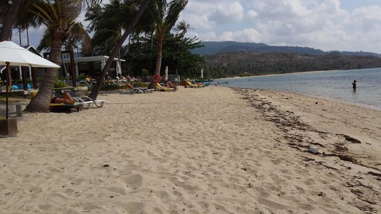 Centra by Centara Coconut Beach Resort Samui : The Beach as it was for 13 days.
