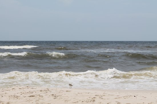 Mexico Beach: Wave watching