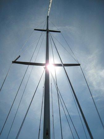 Shaka Sailing : Beau temps au rendez-vous