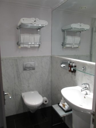 Radisson Blu Edwardian Sussex Hotel: Spotless bathroom with lots of towels
