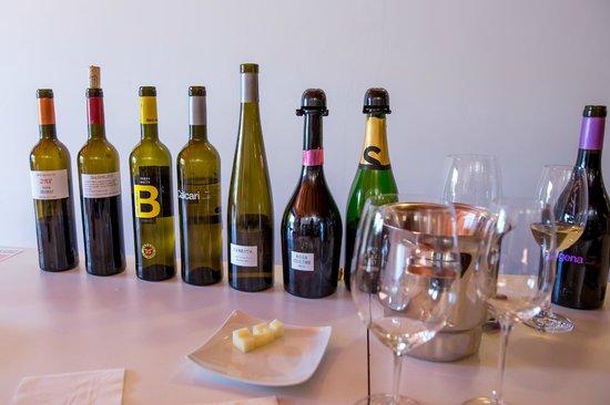 Bodegas Parés Baltà: Wine tasting