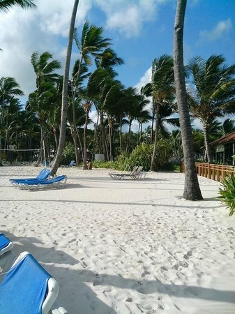 Bavaro Princess All Suites Resort, Spa & Casino : Beach, not a lot of shade
