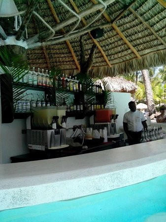Bavaro Princess All Suites Resort, Spa & Casino : pool bar