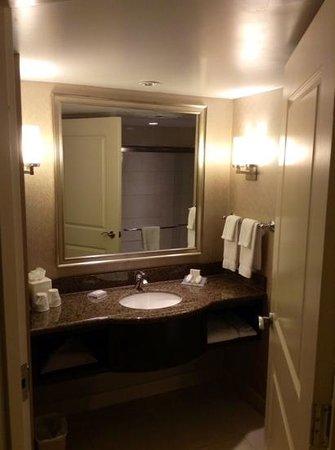 Hilton Garden Inn Toronto Downtown: salle de bains