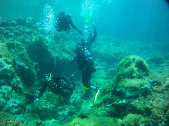 Plongée Malte: de superbes tombants