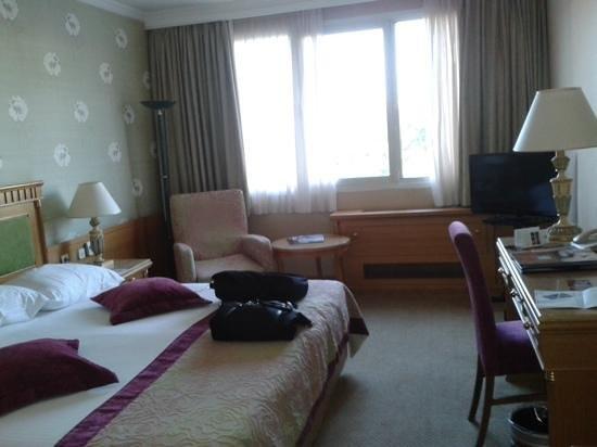Divani Caravel Hotel: standard room