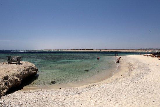 The Palace Port Ghalib : spiaggia