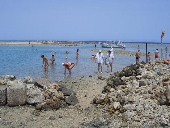LABRANDA Club Makadi : отлив на заливе