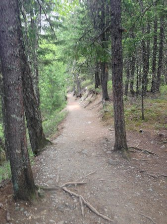 Nairn Falls Provincial Park: Trail to the falls