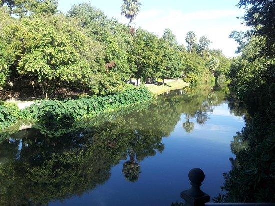 City Sightseeing San Antonio: The San Antonio River