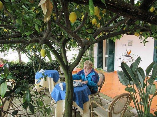 Ravello Rooms: piovono limoni....