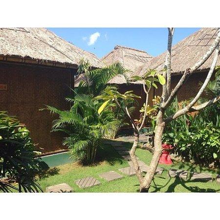 Bali Green Spa: Heaven on Earth