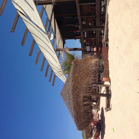 Troia, البرتغال: Praia da Comporta