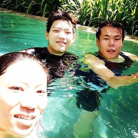 Mayaloka Villas: Pool Shot