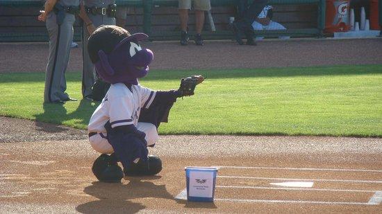 Louisville Slugger Field: Watching The Louisville Bats At Slugger Field
