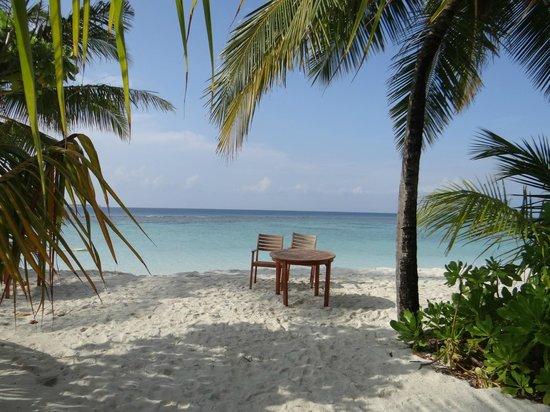 Coco Palm Dhuni Kolhu: plage
