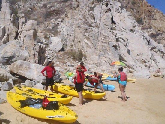 Baja Outback - Day Tours: Pelicano