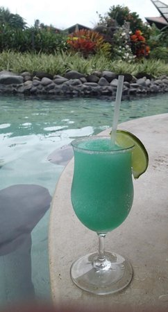 Arenal Springs Resort and Spa: Tropical Libation