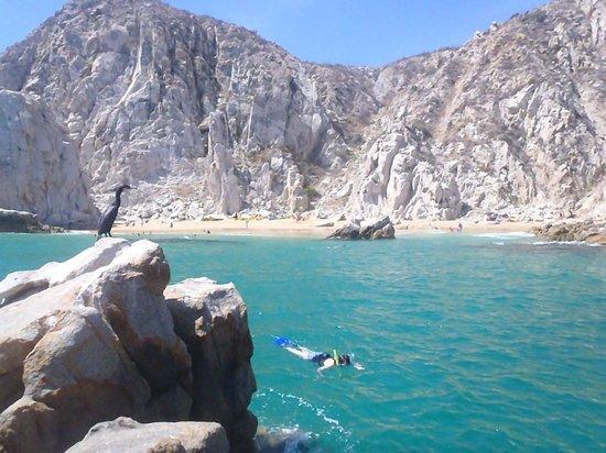 Baja Outback - Day Tours: Pelicanos Beach