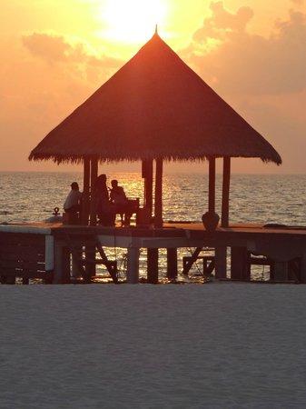 Coco Palm Dhuni Kolhu: coucher soleil