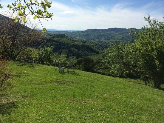 Le Silve di Armenzano: What a view!