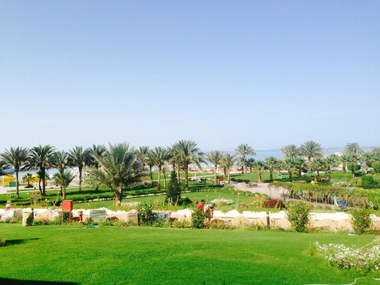 Hilton Hurghada Plaza: Вид из номера 127