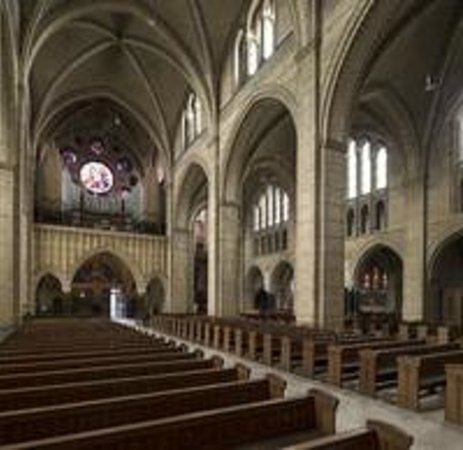 Cathedral of Saint Bavo: The nave