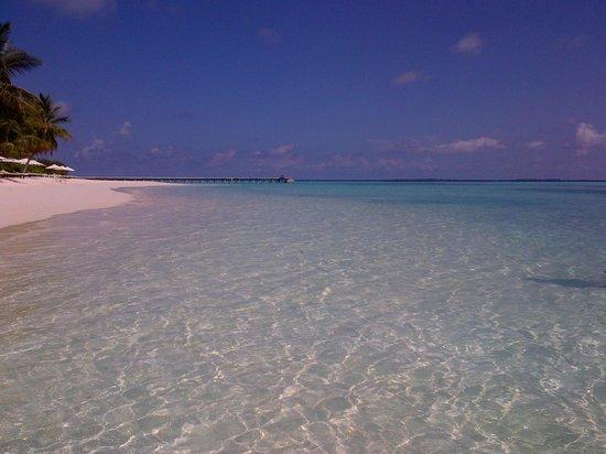 Vakarufalhi Island Resort : un mare magico