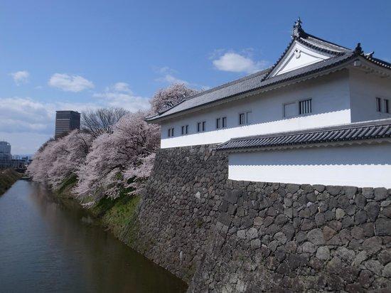 Yamagata castle: 東大手門