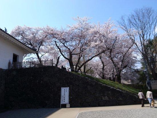 Yamagata castle: 東大手門の入口
