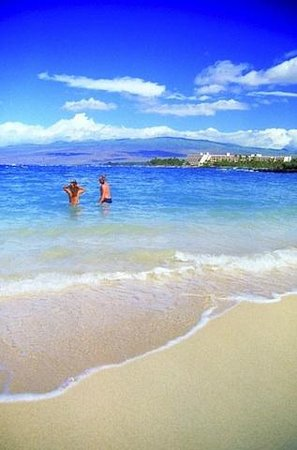 Fairways at Mauna Lani: Big Island's best snorkeling!