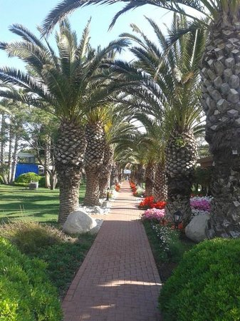 Club Asteria Belek : To the beach