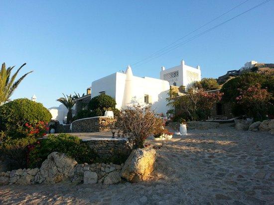 Leonis Summer Houses: Leonis premises